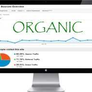 organic search traffic SEO
