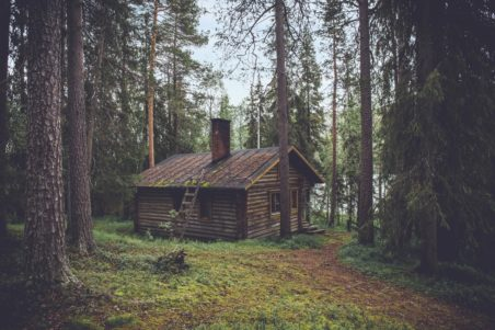 woods-cabin-trees-green