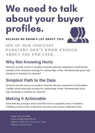 Buyer Profile Example